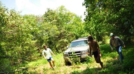 Sasquatch Trot - The Story